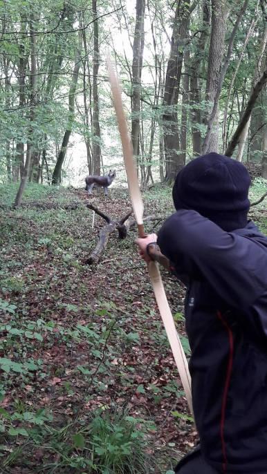 Tir en forêt