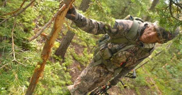 Mountain Hunt Gear: Top 5 Must-Haves for the High ...