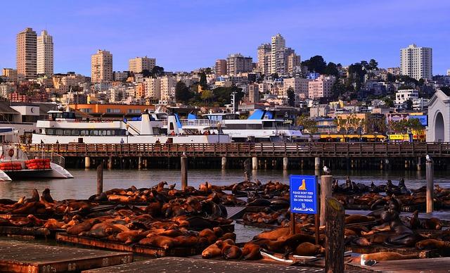 Pier 39_San Francisco