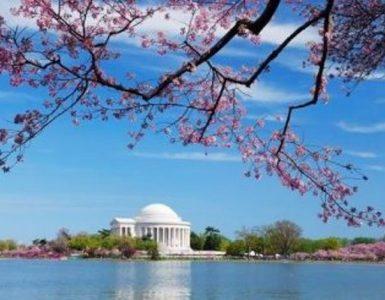 Washington_Spring