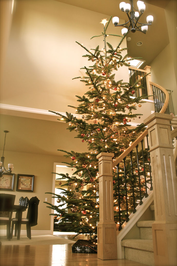 Beautiful Decorations For Your Home Home Decor