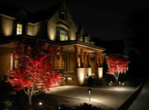 20 Creative Ideas Of Landscape Lighting for Dramatic Backyard