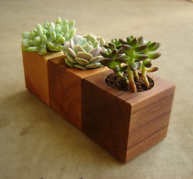 Cedar Flower Planters