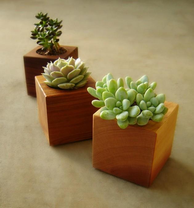 Exterior Plant Pots
