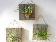 20 Creative Handmade Air Plant Decorations