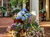 15 Ideas For Your Garden From The Mediterranean Landscape ...