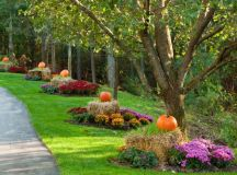 15 Soothing Autumn Landscape Ideas For This Season