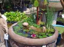 15 Charming DIY Mini Garden Pond Ideas