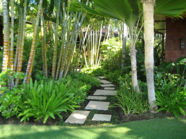 stunning tropical landscape