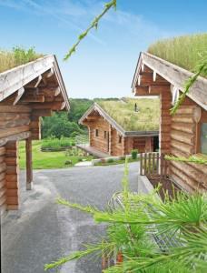 village en bois écologie conçu parJérome Largeau