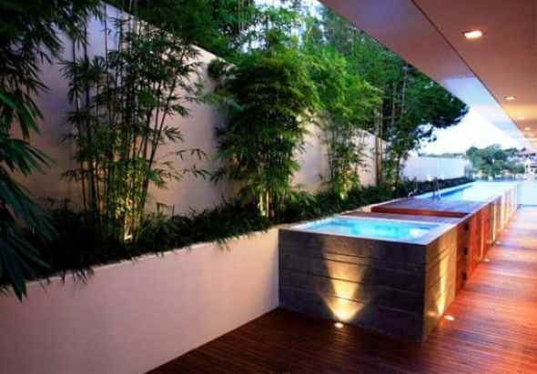 Beautiful Front Garden Design with Exotic Bamboo Tree