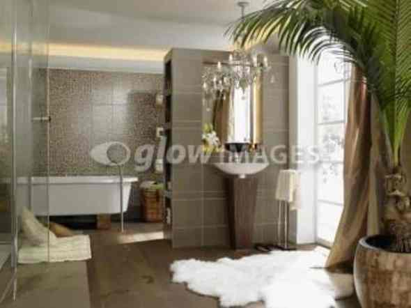 luxurious safari style bathroom