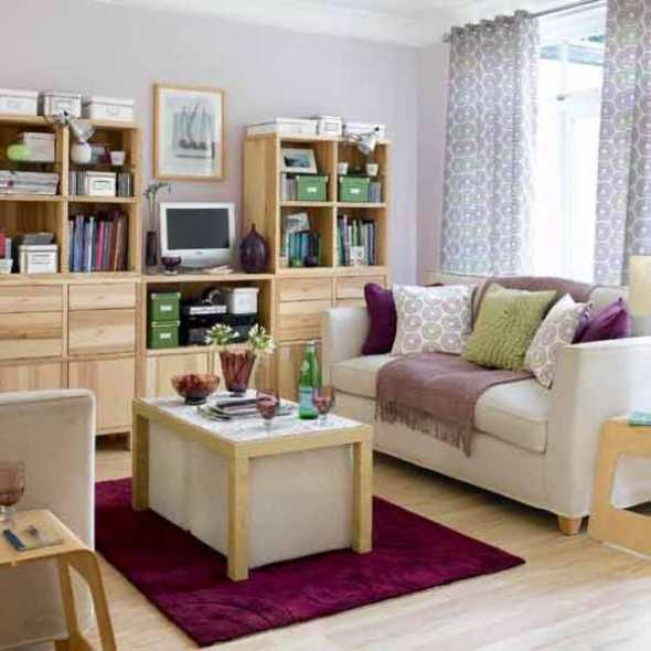 Decoration small living room with Clutter & Storage