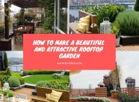 How To Make A Beautiful And Attractive Rooftop Garden Featured