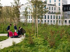 Primary School for Sciences and Biodiversity, France / Chartier Dalix