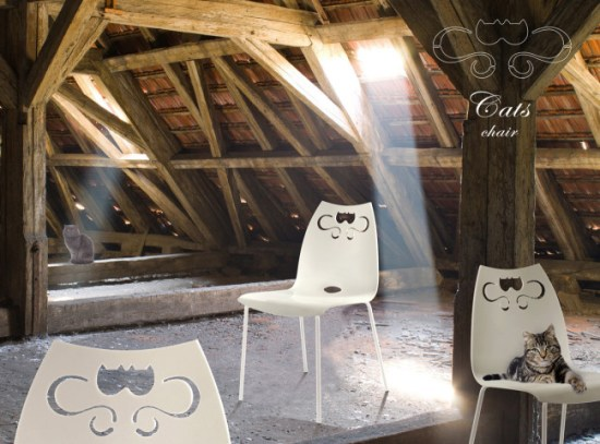 Cats-Solaio-W