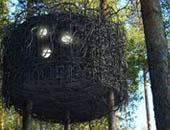 Tree-hotel-a-nest
