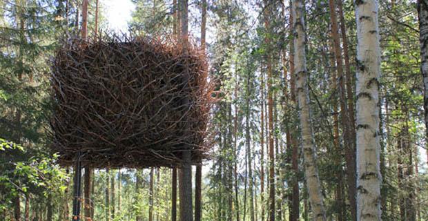 Tree-hotel-f-nest