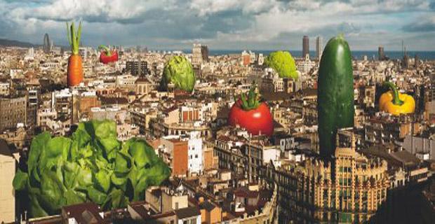 Coltivare in citt orti urbani in Italia