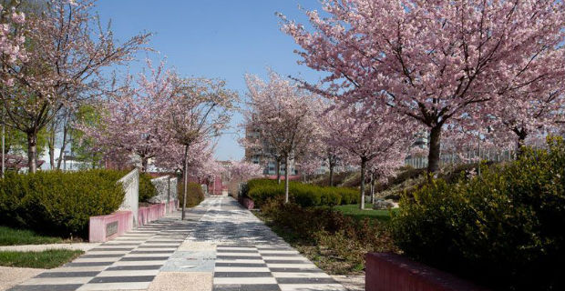 Parco Portello unoasi verde alle porte di Milano