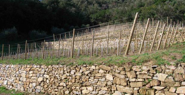 Muri a secco in pietra tecniche di realizzazione