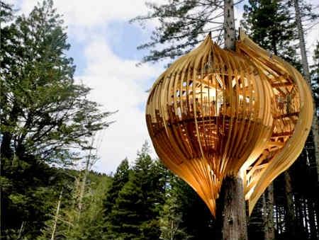 Il ristorante sull\'albero in Nuova Zelanda