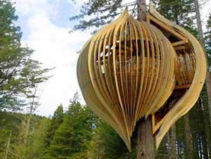 Yellow Treehouse Ristorante