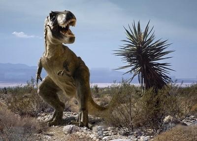 Autre dinosaure