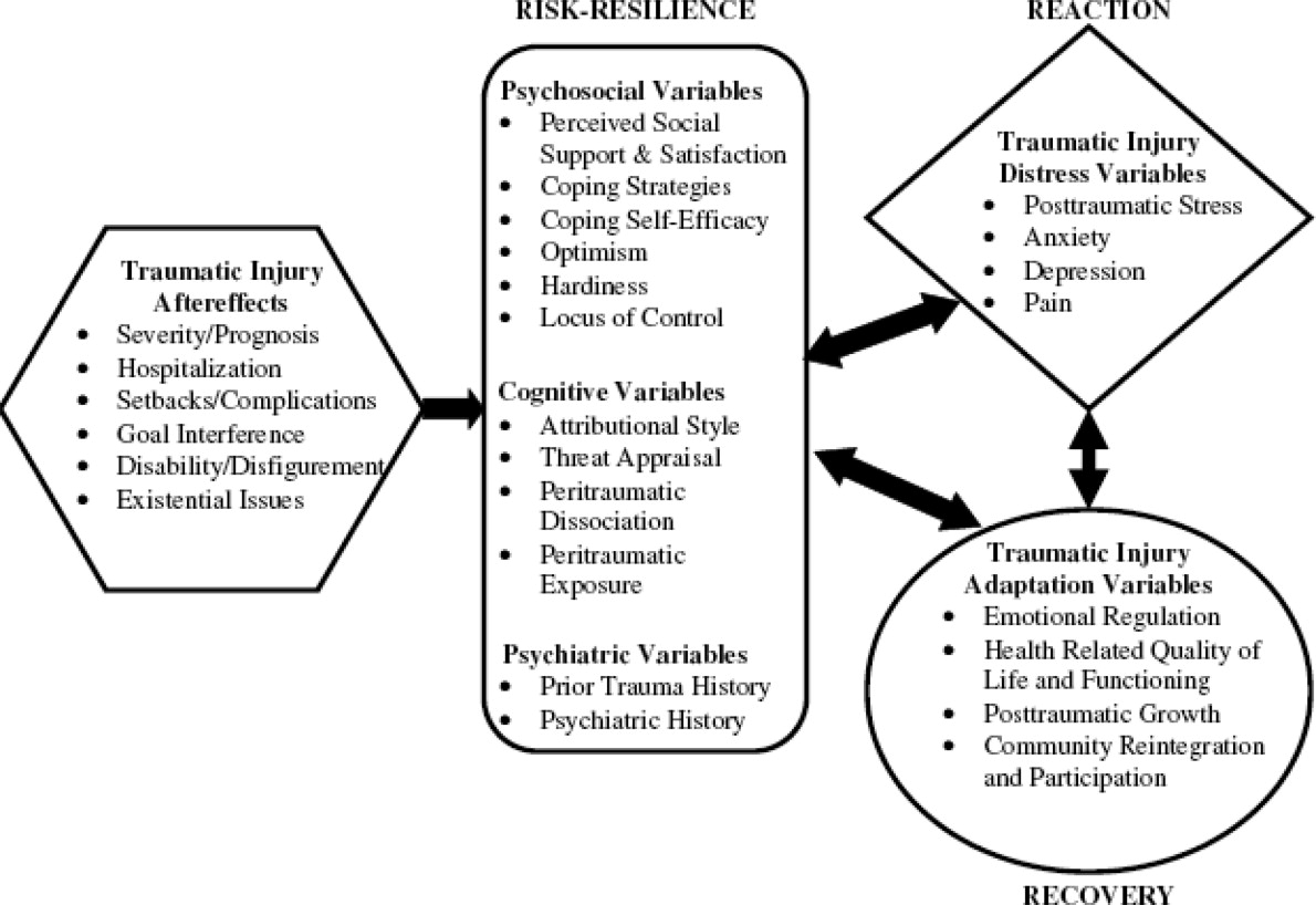 The Injury Distress Index: Development and Validation