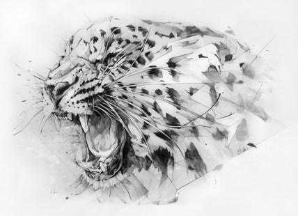 Derwent Leopard by Alexis Marcou