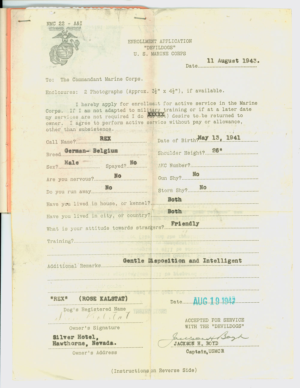 The Enrollment Application Was Designed To Filled Out From The Dog S  Perspective. (Records Of The United States Marine Corps, Rg 127)