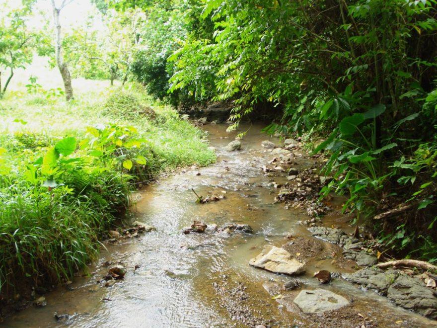 Dominican Republic - River