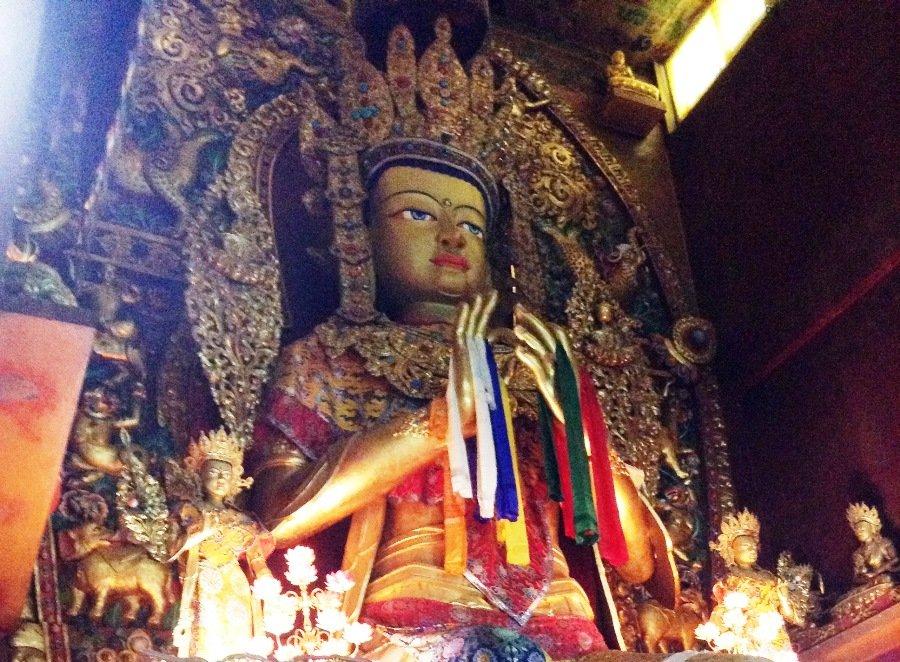 Volunteering - Buddha