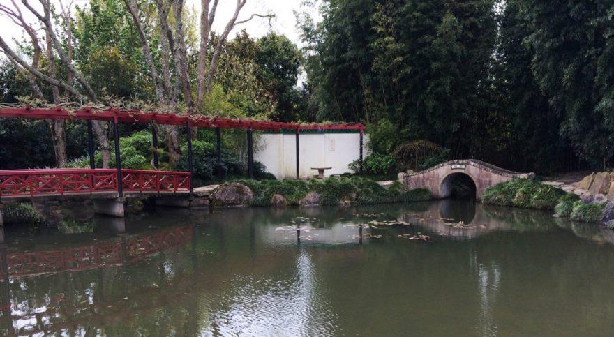 Hamilton Gardens 6