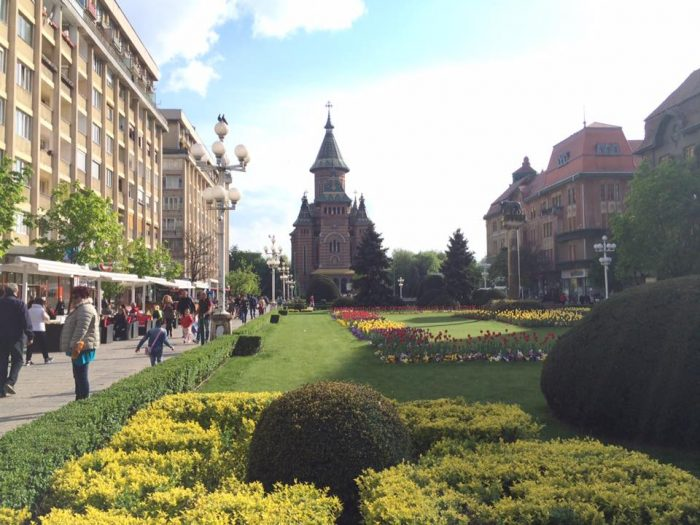 If you're looking for an affordable place to stay in Timisoara, don't waste your time researching and scouring reviews: FreeBorn Hostel is the way to go.