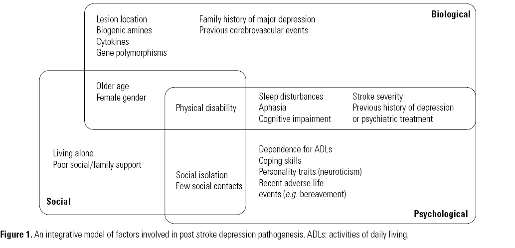 Post stroke depression: clinics. etiopathogenesis and therapeutics - Archives of Clinical Psychiatry