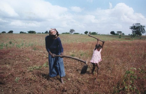 Rosalina Malungana and her great-granddaughter Nestacia, weeding Rosalina's field, Facazisse (Magude district), March 1996. © Heidi Gengenbach, 1996.