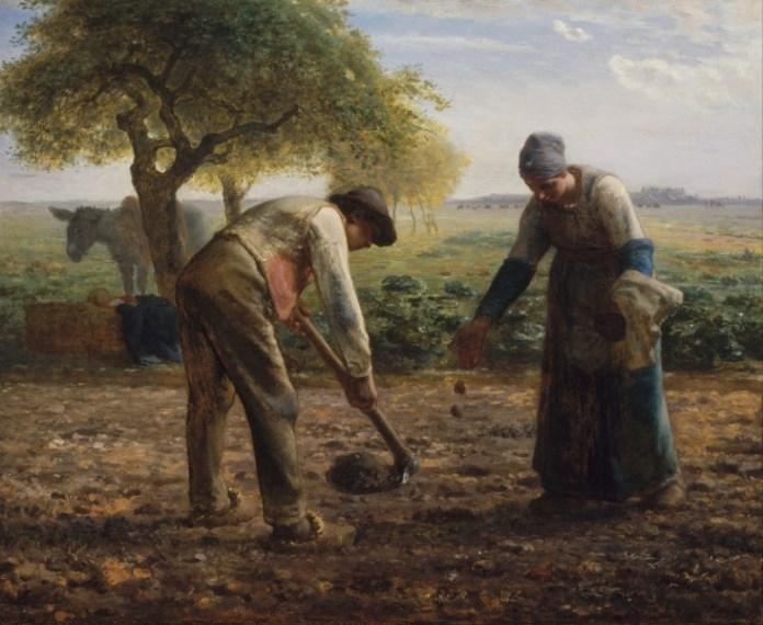 Una mujer y un hombre se hallan plantando patatas en una huerta. Pintura de Jean François Millet, 1861.