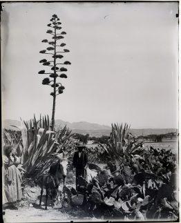 Pareja de campesinos cerca de Pulpí, Almería (1899-1900)