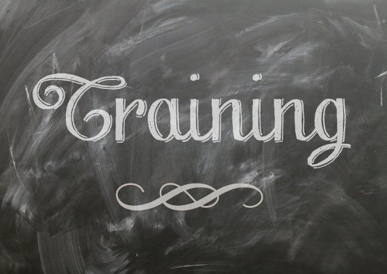 """The word """"training"""" on a chalkboard"""