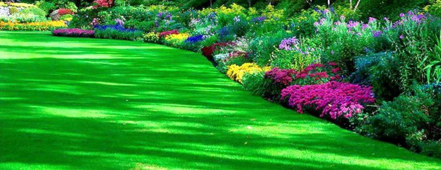 jardin de eventos tepotzotlan