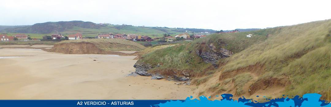 Sign up now! On 21st May 2016, we are celebrating the European Natura 2000 day by removing invasive exotic species from the dunes in Verdicio, Asturias