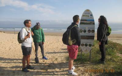 Chronicle #1: Celebrating Natura 2000 day. Removing capeweed plants from Berria (Santoña)