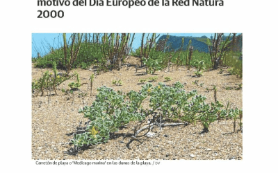 """Special visit to the Santiago beach to mark the European Natura 2000 Day"""