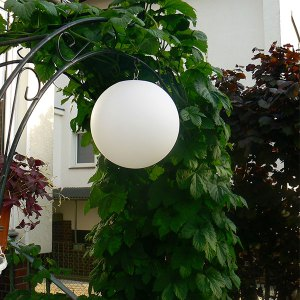 LED Beleuchtung am Abend und Deko-Lampe am Tag