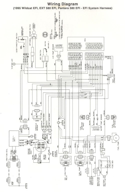 small resolution of 1992 wildcat 700 wiring diagram wiring diagram data todaywildcat wiring diagram archive of automotive wiring diagram