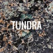Spring TUNDRA Deco