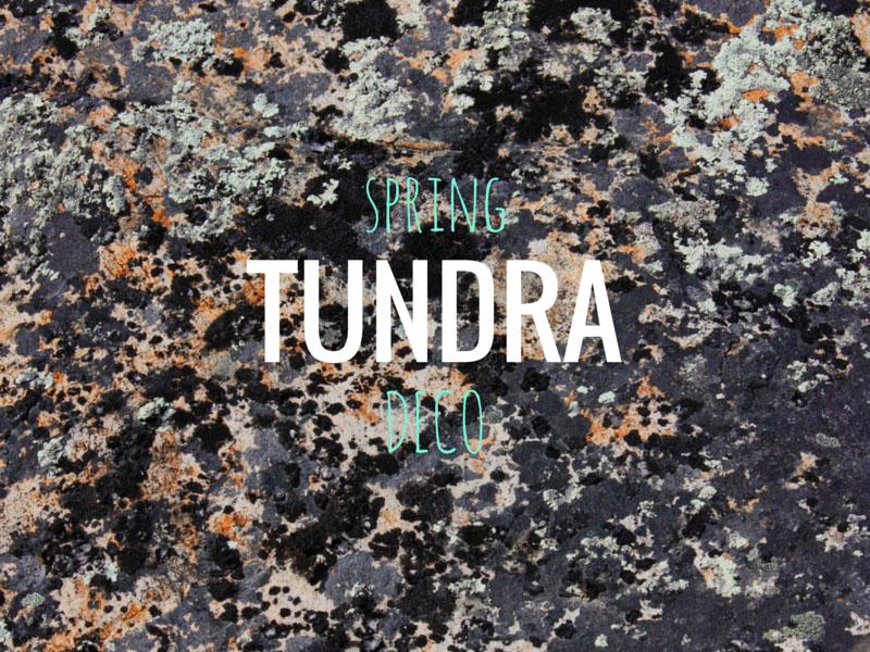 ARCTICdeco.com: Spring Tundra Deco