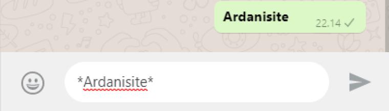 cara membuat tulisan tebal di whatsapp