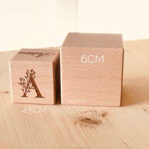 cube 6cm